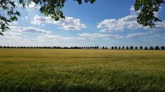 Cyklostezka uhřbitova, autor: Natália Syrůčková